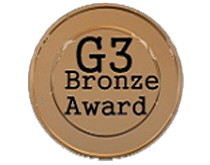 Go!Gaming Giants: Bronze Award